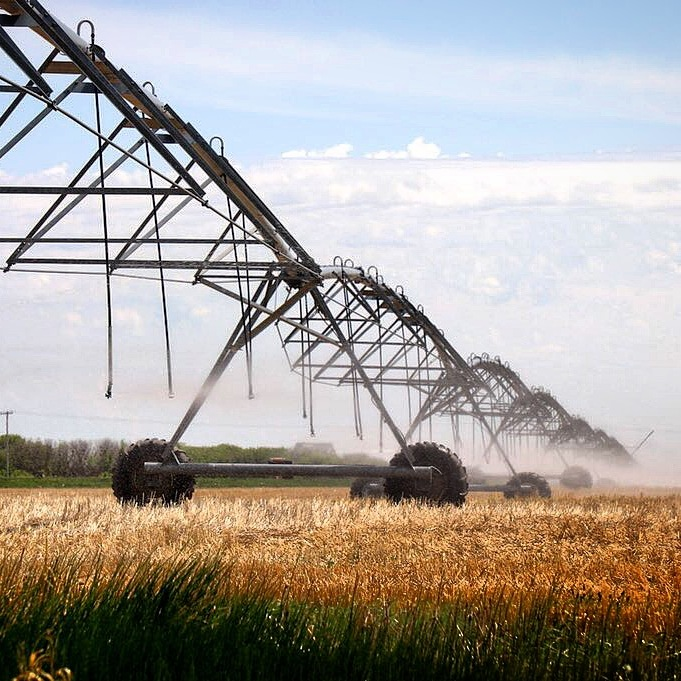 The Importance of Irrigation